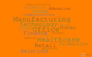 WordItOut word cloud 2452896 300x186 - Industry Experience