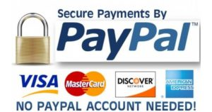 paypal 02 600x353 w2791 1200x630 300x158 - Purchase Services